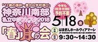 神奈川南部私立中学フェスタ
